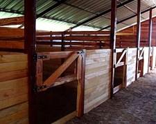 Boxes Para Caballos - Polomade