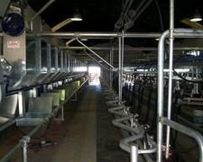 Comederos Para Tambos, Sistema De Alimentacion.
