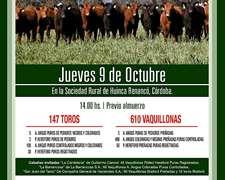 Alfredo S. Mondino Remates Ferias Negocios A Campo