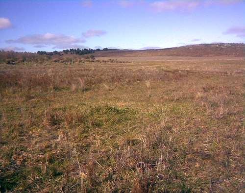 Busco campo para alquilar zona tandil y alrededores mixto for Busco pieza para alquilar