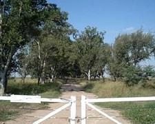 Campo Villa María, Provincia De Córdoba. 1785 Ha.