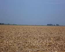 300 Agrícolas 100% En San Andres De Giles