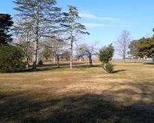 Campo Agrícola Excelente Tierra