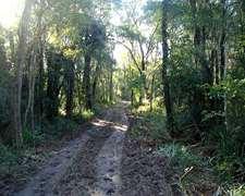 Campo En Formosa 750 Has - Apitud Agric. - Permiso Desmonte