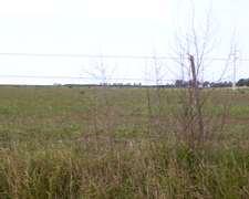 Chacra De 13 Has. En Mojones Sud Departamento Villaguay