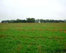 Excelente Campo De 400 Has. Agrícolas La Pampa