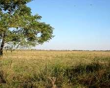 Pilar, Aptitud Mixta, 50 Ha, Agricultura Y Tambo