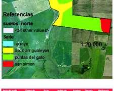 Vendo 209 Has. En Gualeguaychu