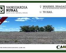 Warnes, Bragado, Provincia De Buenos Aires