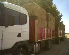 Mega Fardos De Alfalfa
