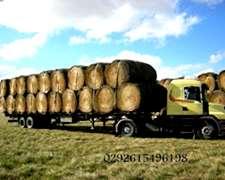 Rollos De Alfalfa Pastura