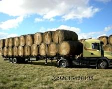 Rollos De Pastura Alfalfa