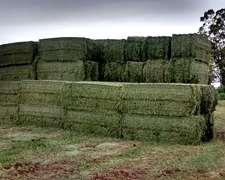 Rollos Y Megafardos De Fibra O Alfalfa
