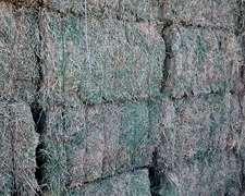 Vendo Rollos, Megafardos Y Pellet De Alfalfa $ 0,80 El Kg