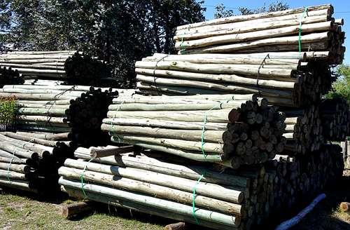 Postes y rodrigones de madera de eucaliptus impregnada - Postes de madera ...