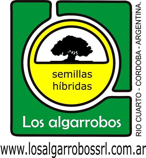 Melilotus Alba (disponible Sin Peletear Y Pelet.)
