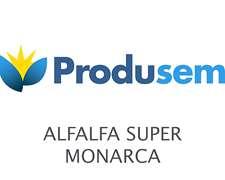 Alfalfa Super Monarca, Grupo 8 Produsem - Fiscalizada