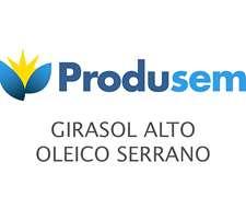 Girasol Alto Oleico - Serrano