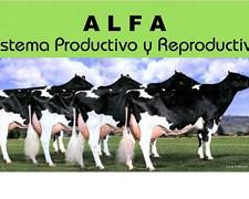 Sistema De Producción Y Reproducción Gan.vacuno